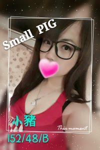 小豬 (2)